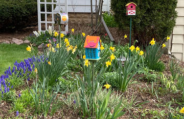 Kathleen Braier's Garden and Birdhouses