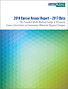 2017 Cancer Center Annual Report